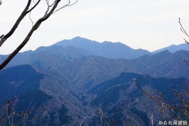 仏果山周遊
