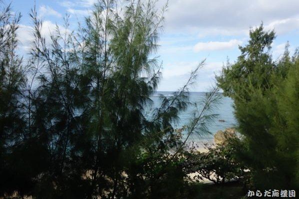 本部町のオンザビーチLUEコンドミニアムからの眺め