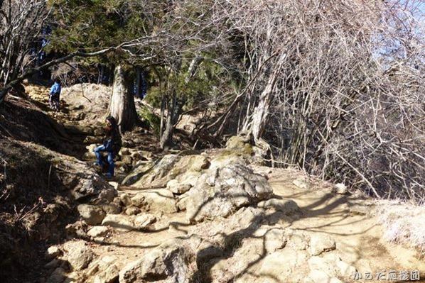 丹沢大山は岩の山!
