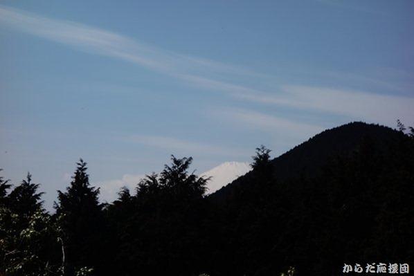 シダンゴ山からの富士山
