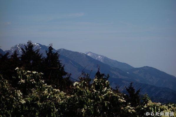 シダンゴ山からの大山
