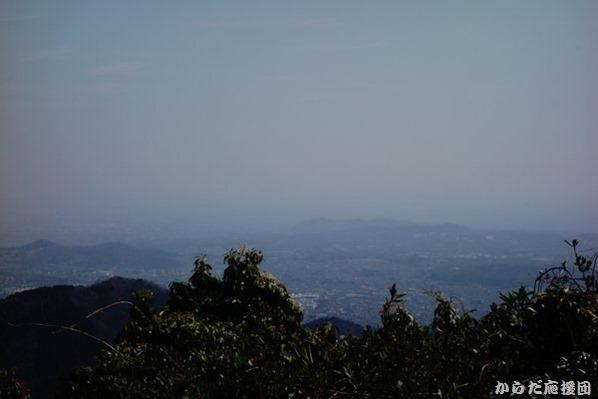 シダンゴ山からの相模湾