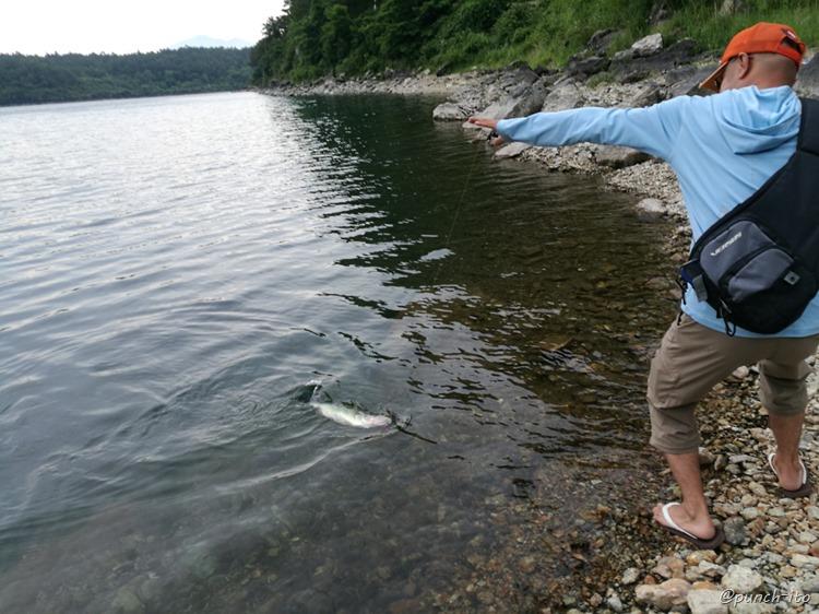 西湖で釣りキャンプ