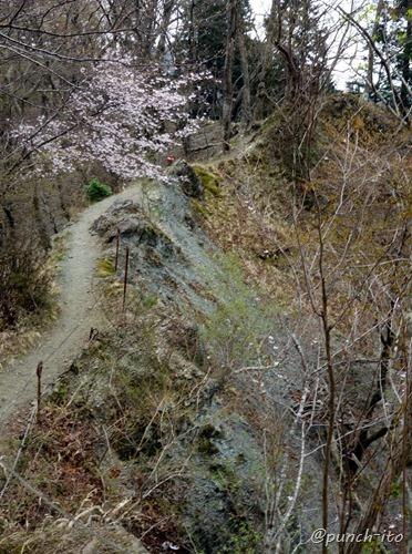 鍋割山への尾根