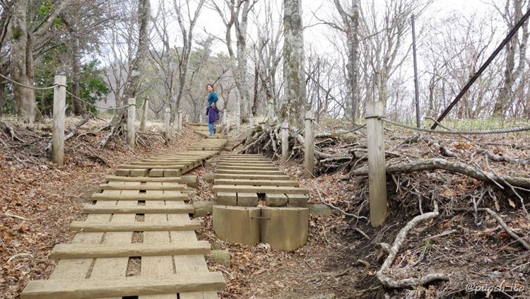 鍋割山への木道