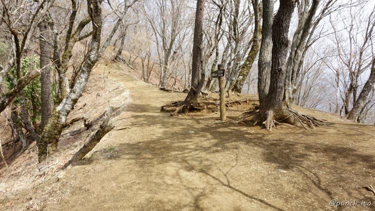 鍋割山への道