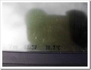 水温30℃!