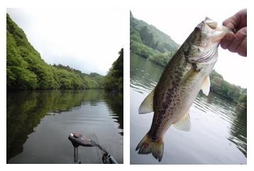 釣りとトリガーポイントと私-カワハギ